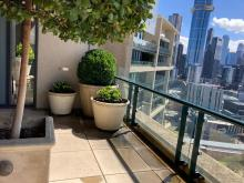 High Rise Pits and Plants